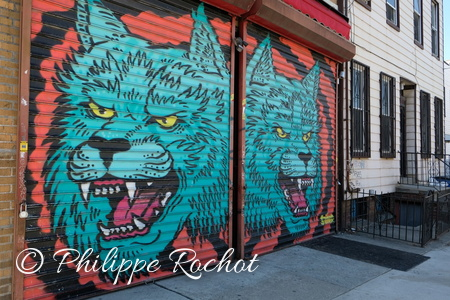 New York USA Sreet art Quartier de Bushwick 2018 (16)