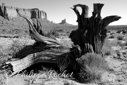 USA Monument valley  Copie  paysage sept 2008